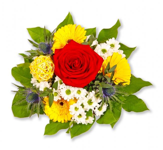 Blumen Zum Geburtstag Verschicken Blumenversand Pflanzen Shop